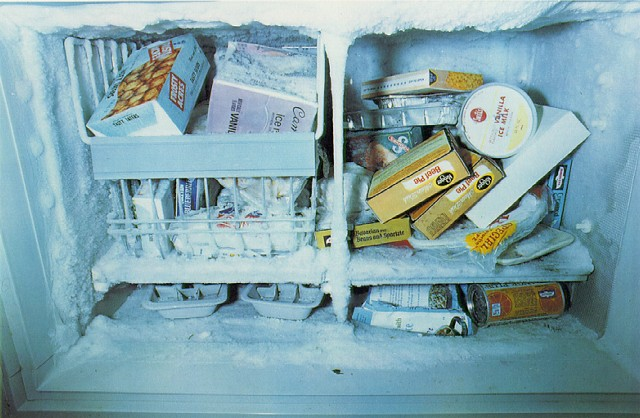 eggleston_freezer