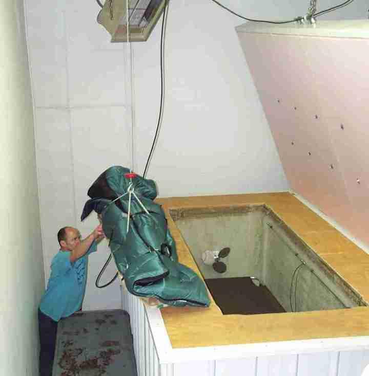 cryonics.institute